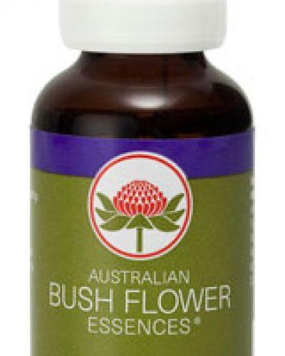 Australian Bush Flower Essence Combinatie remedies - Meditation Essence