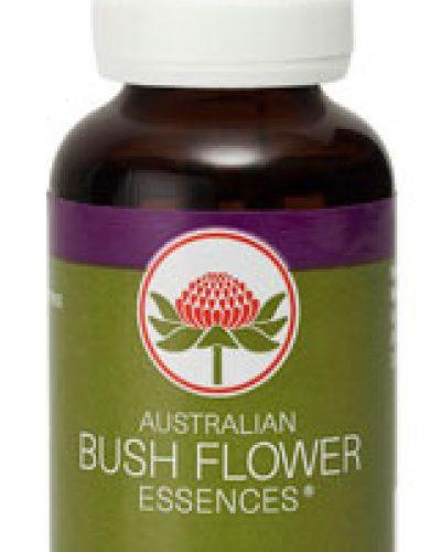 Australian Bush Flower Essence Combinatie remedies - Solaris Essence