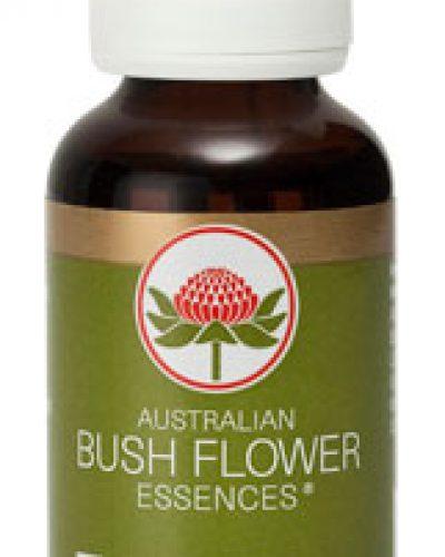 Australian Bush Flower Essence Combinatie remedies - Transition essence
