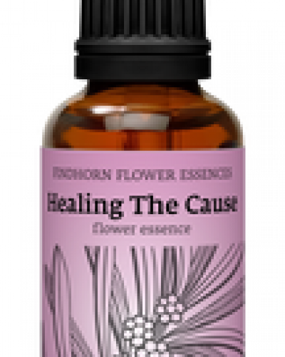 Findhorn Combinatie remedies - Healing the cause
