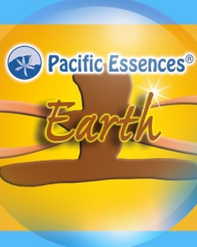 Elemental Remedies Sea Essence  - Earth